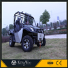 Kingwoo EEC Approved Electric 5KW Utility Terrain Vehicle