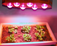 Reflector + Growth/Bloom Switches Design 460w LED Aquarium Light simulates sunset sunrise for fish coral reef marine products