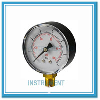 Gaseous and Liquid Media Cheap Water Pressure Gauge