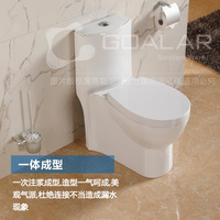 GO-20 Bathroom washdown intelligent toilet