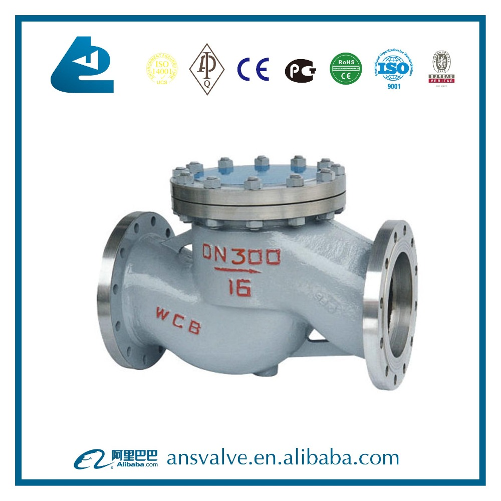Natural gas Casting swing check valve