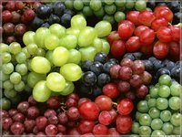 Grape seed Extract 95% Proanthocyanidins, 80%-90% Polyphenols antioxidant