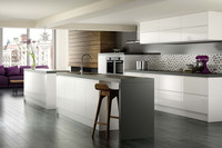 2015 Ritz High Gloss Ready to Assemble Lacquer Spray Paint Kitchen Cabinets