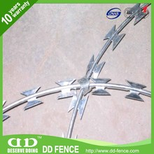 The most Top electro galvanized razor barbed wire in China DD