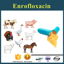 Low price Enrofloxacin from pharmaceutical manufacturing companies for free sample