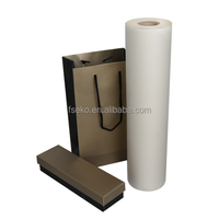 Digital thermal lamination precoating film with gloss 18,21,24,27mic in China