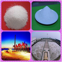 High temperature tolerant and salt resistant partially hydrolyzed polyacrylamide for bore piling