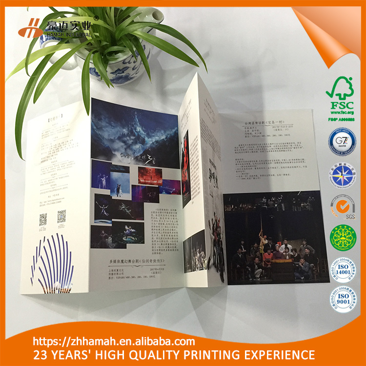 Hotsale special folding flyer printing service free sample advertising poster