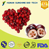 Natural Fruit Extract Eye Protection Cranberry Extract