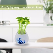 new type desktop Bedroom air purifier and UV light ozone generator
