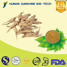 herb plant extract Angelica extract/Dong Quai extract medicine for blood circulation