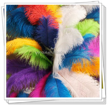 "Free shipping 12 color avaliable 8""-10"" ostrich feathers plumage flapper dresses for bridal or wedding part decoration F06-1"