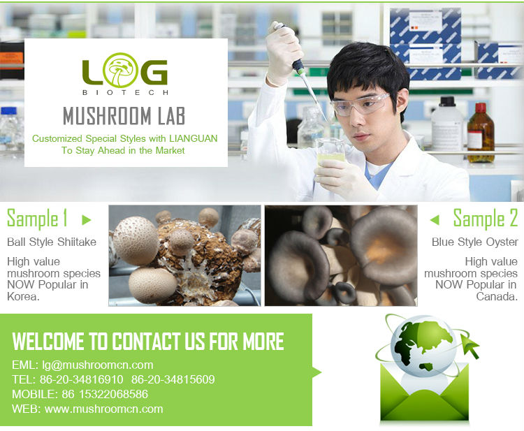 logs suppliers for grow shiitake