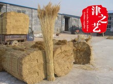 TAT building use sweet water reed