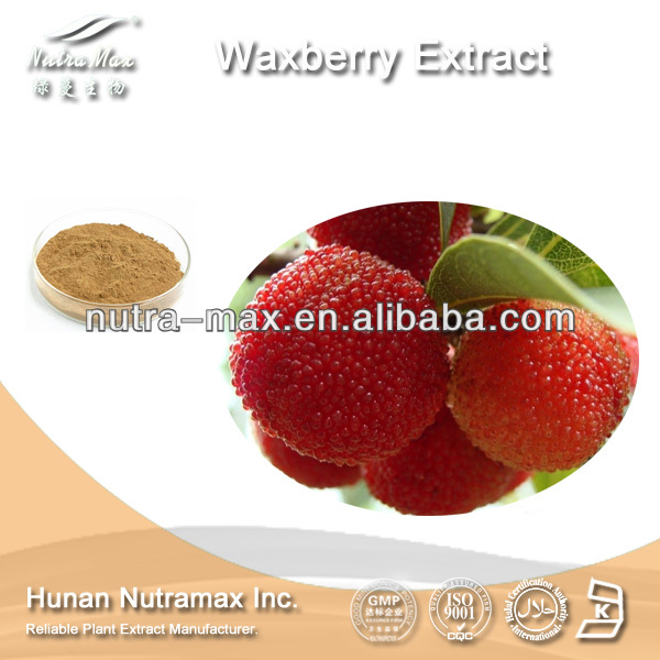 Nutramax Supply-Pure Myrica Rubra Fruit P.E. Myricetin 70%~99%