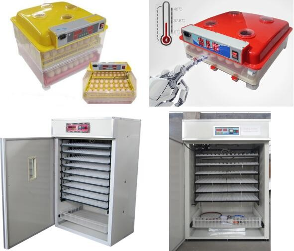 Hot Sale Full Automatic Widely Used Poultry Egg Incubator .jpg