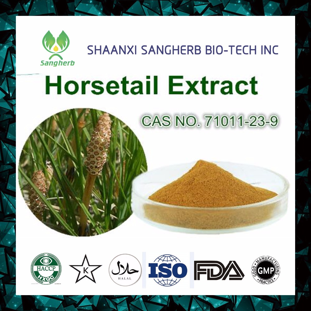 Horsetail P.E. Horsetail Extract 10:1 Organic Silica acid 7%