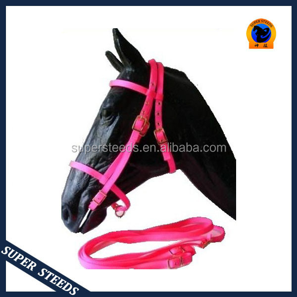 Wholesale Padded Nylon Halter Colorful Horse Bridle With Snap Hook