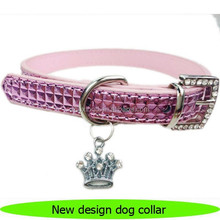 2016 New design innovative dog products
