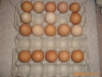 Egg tray 30 chicken eggs paper egg tray for sale