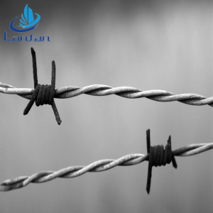 Professional factory high quality barbed wire length price per roll / kg kenya and philippines