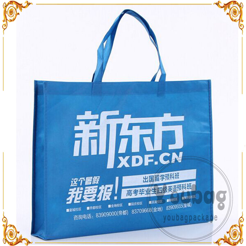 Custom Made Promotional Cheap polypropylene non woven bags