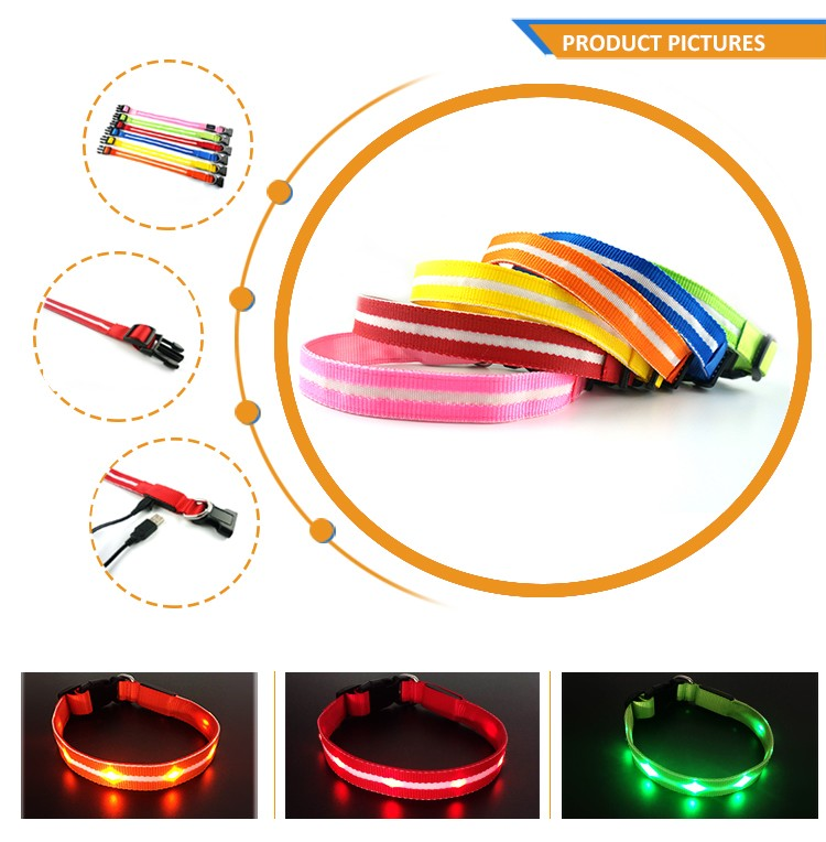 Great Quality TZ-PET6100U USB Rechargeable LED Dog Collar