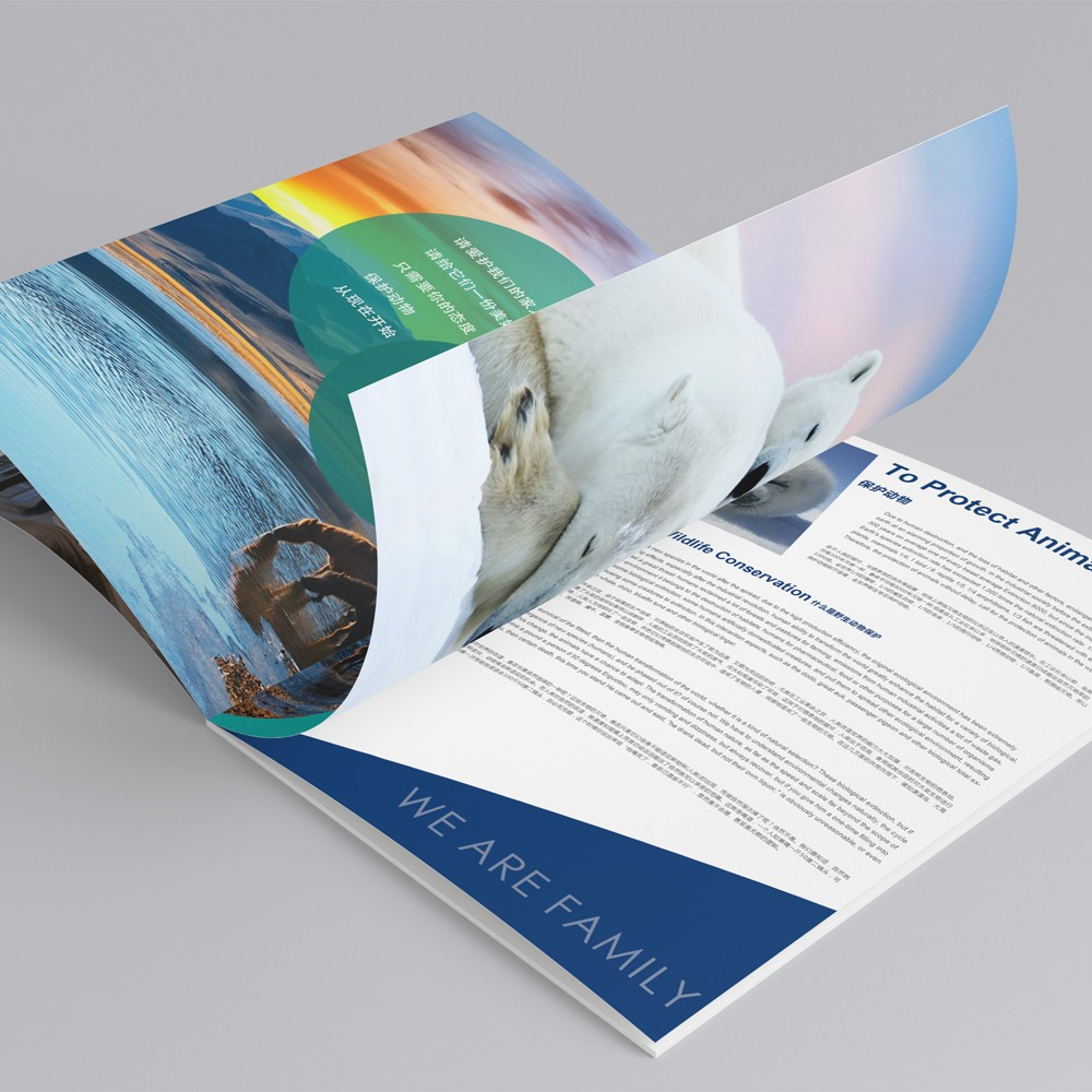 Digital printing furniture brochure design make in china
