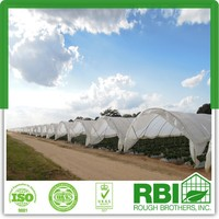 Tunnel Greenhouse Film Cover Low Cost