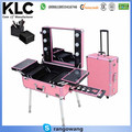 Rolling Studio Makeup Artist Cosmetic Case w/ Light Leg Mirror Pink Train Table