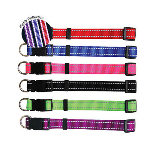 Club custom print logo pet dog leashes Colorful China factory