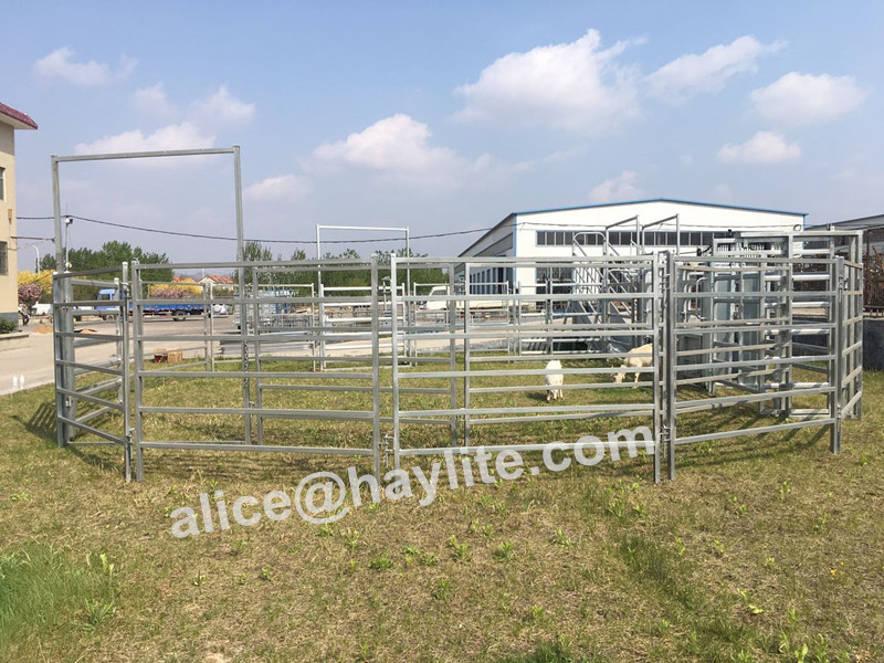 China Factory manufactured high strength Oval Rail Cattle Panels Optional head bail