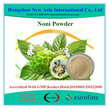 100% Pure Noni Extract With Kosher Halal ISO22000 Certificate