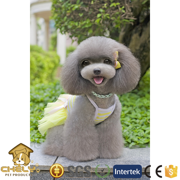 500+ models available pet clothes for dog and cat with nice design and accessories