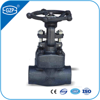 API Thread NPT BSP Forged Steel Gate Valves