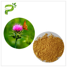 Silymarin Herbal Plant Extract Milk Thistle Extract From Seed Light Yellow Anti - Cancer