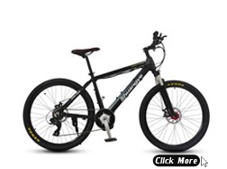 48V 1000W strong fat electric bike