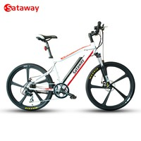 Sataway high quality strong newest 26inch electric mountain bicycle e bike with hidden battery