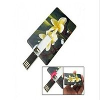 u disk usb flash pen drive,u flash drive 2gb,business card style usb pen drive