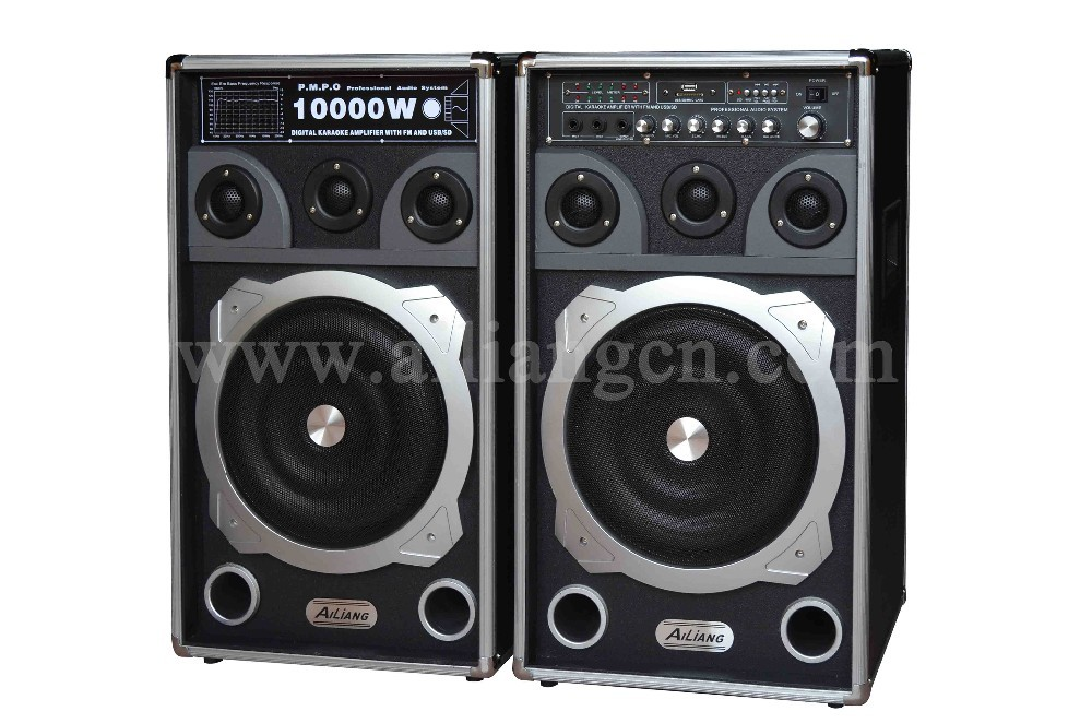 10 inch woofer powered speaker with wireless mic