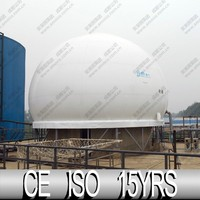 2015 Hot Sale Custom Shaped Balloon, Cover For Biogas Tank