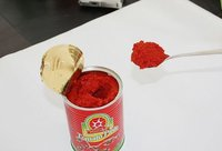 70g/400g/800g canned tomato paste , tomato sauce, tomato factory