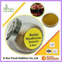 Natural Herbal Reishi Mushroom Extract Polysaccharide Triterpene