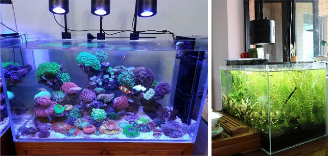 diy led aquarium lights & New Lumini Lighting Programmable Saltwater Reef Coral Fish Tank Led ...