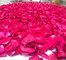 pure natural material red rose petal dried flower and potpourri