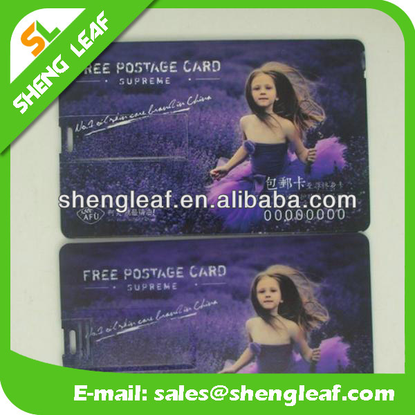 Card USB/ Business USB Card/ Pastic Pen Drive Card Type