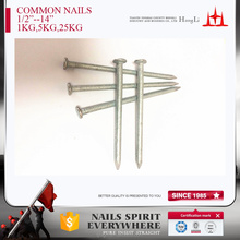 galvanized or polished common iron nails factory