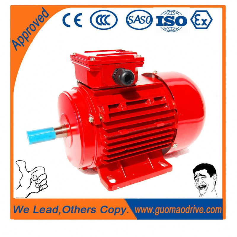 Excellent starting performance and novel design 18kw ac electric motor