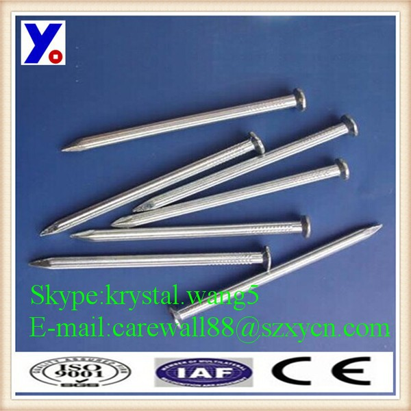 xy common nails fasteners manufacturers in china