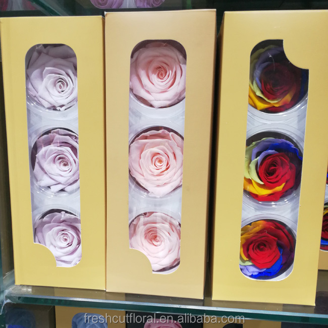 Wholesale Preserved Roses 6-7cm stabilized eternity flower export from China